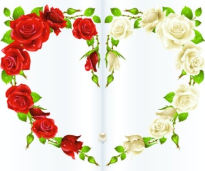 red_rose_and_white_rose_heart_background_vector_544116